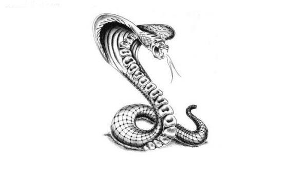 Тату кобра эскизы