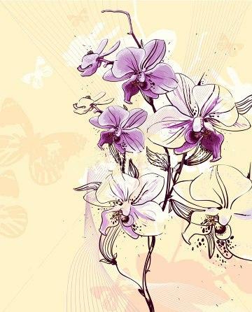 эскиз тату цветок белой лилии Pictures to pin ...: pinstake.com/эскиз-тату-цветок-белой-лилии