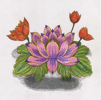 Цветной эскиз татушки лотоса
