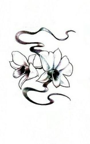 Эскиз тату в виде пары цветков орхидеи