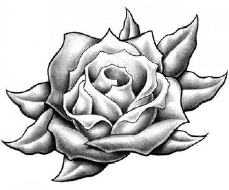 Черно белый эскиз татуировки роза