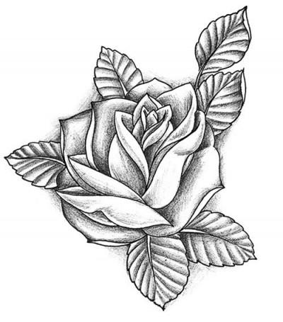 Белый эскиз татуировки в виде розы