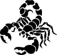 Эскизы тату скорпиона