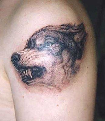 Тату оскал волка на плече