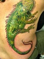 тату зеленая ящерица на мужской спине