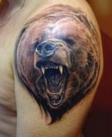 Тату голова медведя с открытой пастью на плече