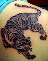 Тату тигр крадется на лопатке, плече