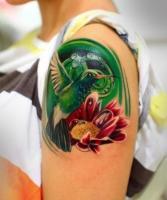 Тату колибри и лотос на плече