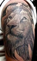 тату добрый лев на мужском плече