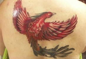 тату на спине красный феникс с черным хвостом