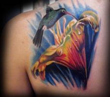 Тату колибри и лилия на лопатке