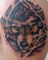 Тату волк - на плече