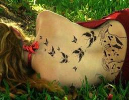 Тату ноты и бабочки на спине
