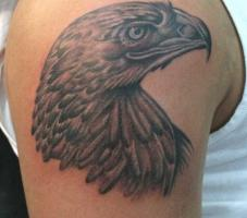 Тату голова орла с острым клювом - на плече
