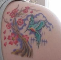 Тату колибри и дерево сакуры на лопатке
