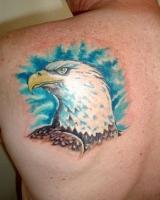 Тату голова орла на синем фоне - на лопатке