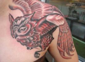 тату красная сова на плече