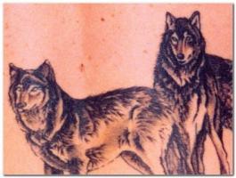 Тату два волка
