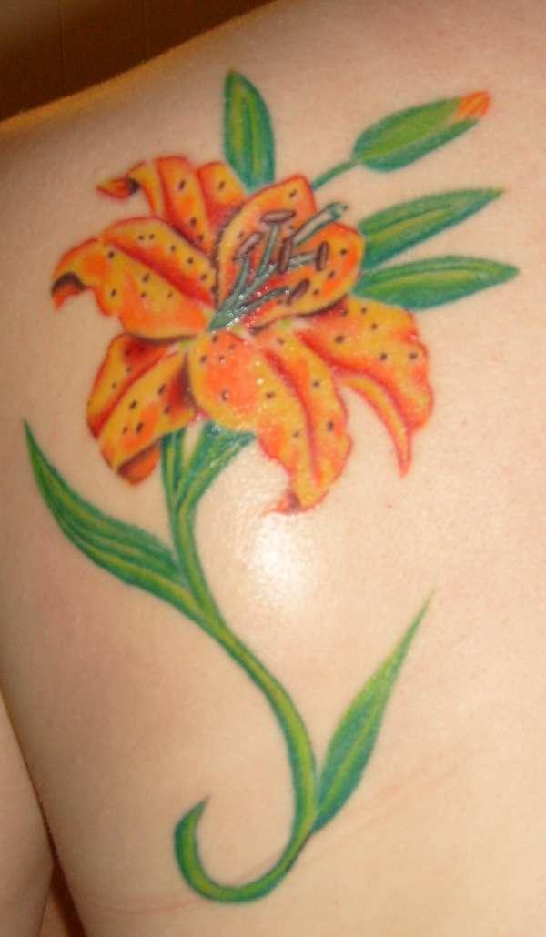 Татуировка цветок лилия, значение татуировки цветы лилия, тату цветы лилия